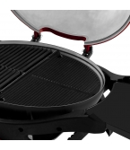 Twin Grill Reversible Hotplate